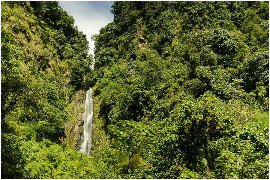 Dominica_0024
