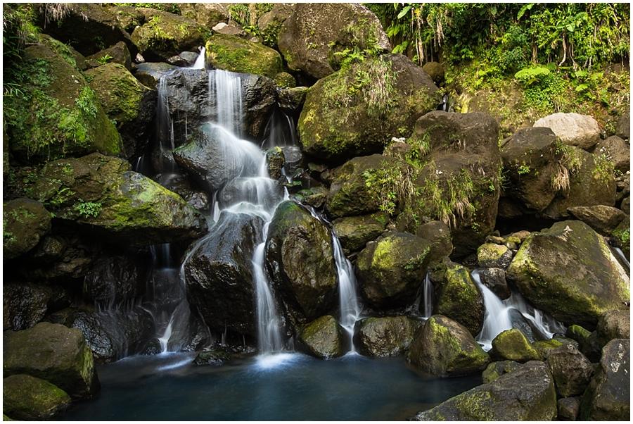 Dominica_0026