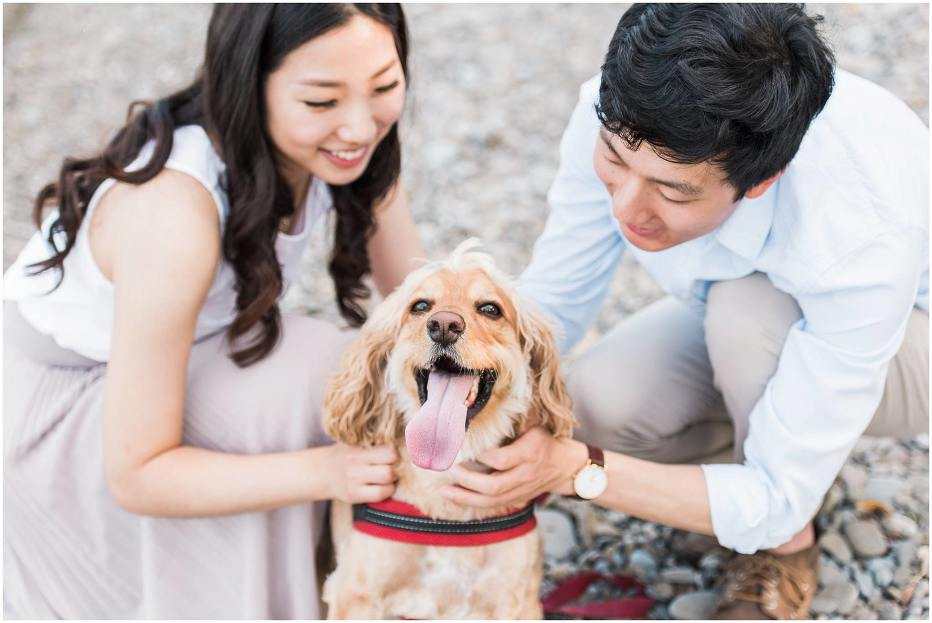 An asian couple kneeling down on a pebble beach petting their light coloured and happy dog with its tounge sticking out